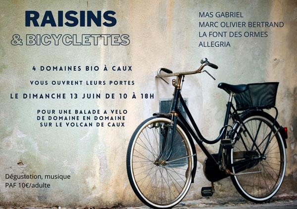raisins et bicyclette