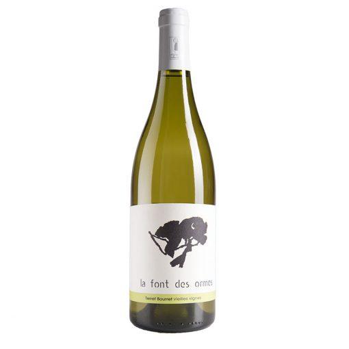 vin blanc languedoc cépage terret bourret